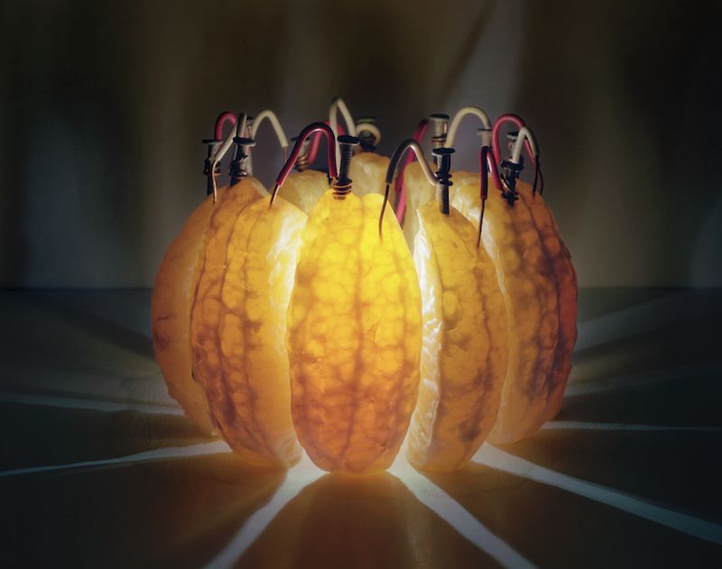electricity from the fruit