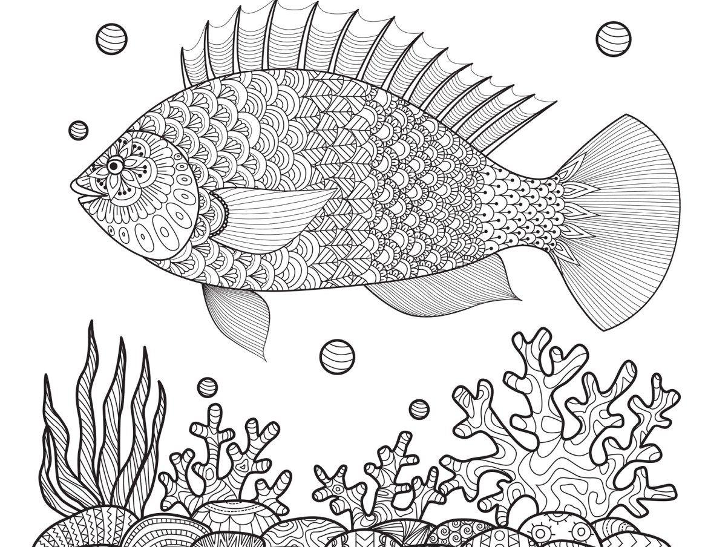 Dessin poisson coloriages été  imprimer gratuitement