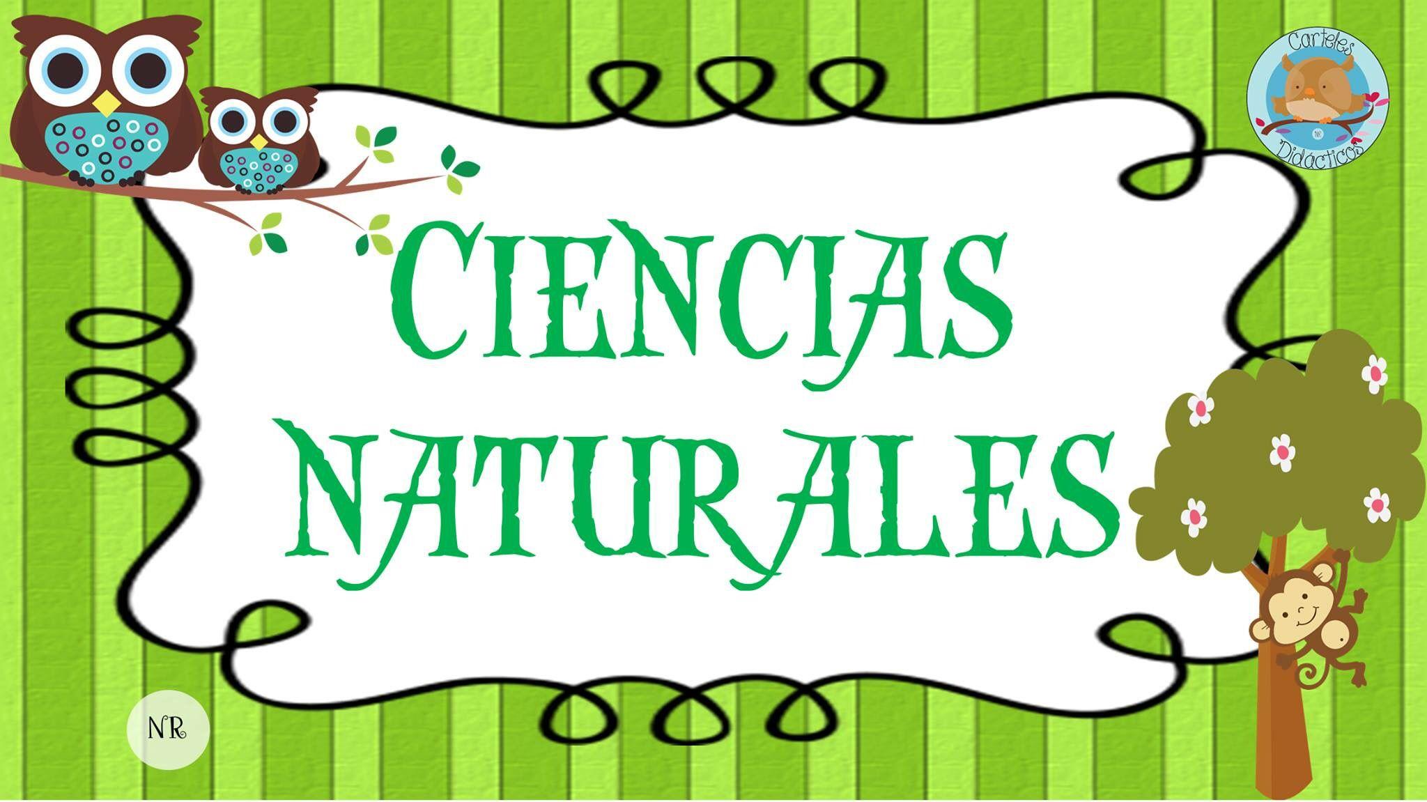 Ciencias Naturales Ciencias Naturales Ensenanza Biologia Dibujo De Navidad