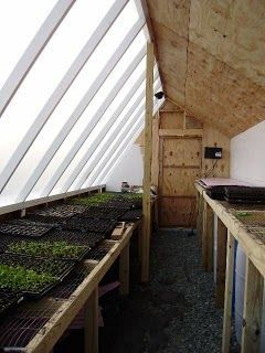 interior of a pive solar greenhouse #greenhousedesign ... on small hydroponic greenhouse, small greenhouse design, small greenhouse kits, small sunroom greenhouse, straw bale greenhouse, small greenhouse foundation, small heated greenhouse, small home greenhouse, small greenhouse heating, small aquaponics greenhouse, small garden greenhouse, build small greenhouse, homestead greenhouse, small hobby greenhouse, small wood greenhouse, small metal greenhouse, diy small greenhouse, small commercial greenhouse, small greenhouse construction, small space greenhouse,