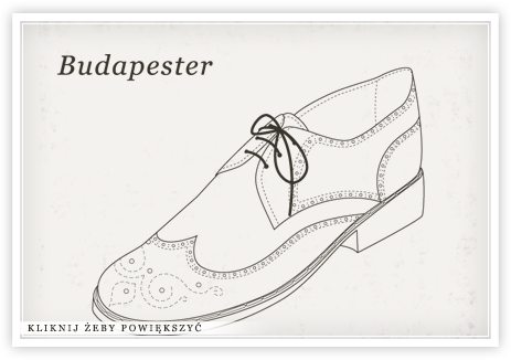 Budapester Wegierskie Buty Shoes Shoes Mens Types Of Shoes