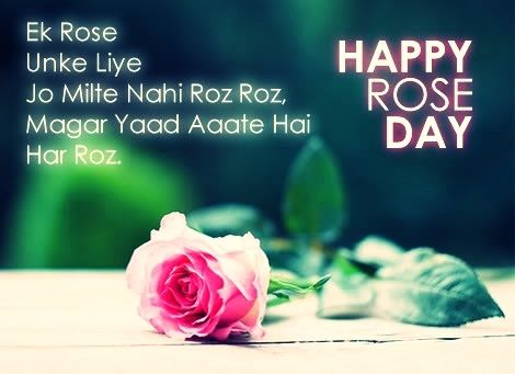100 Happy Rose Day Status In Hindi Rose Romantic Quotes Words
