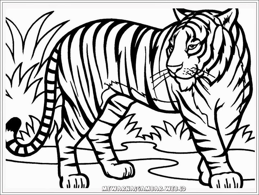 101 Gambar Kolase Harimau Terbaru Adult Coloring Pages Buku
