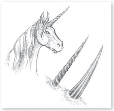 how to draw how to draw a unicorn