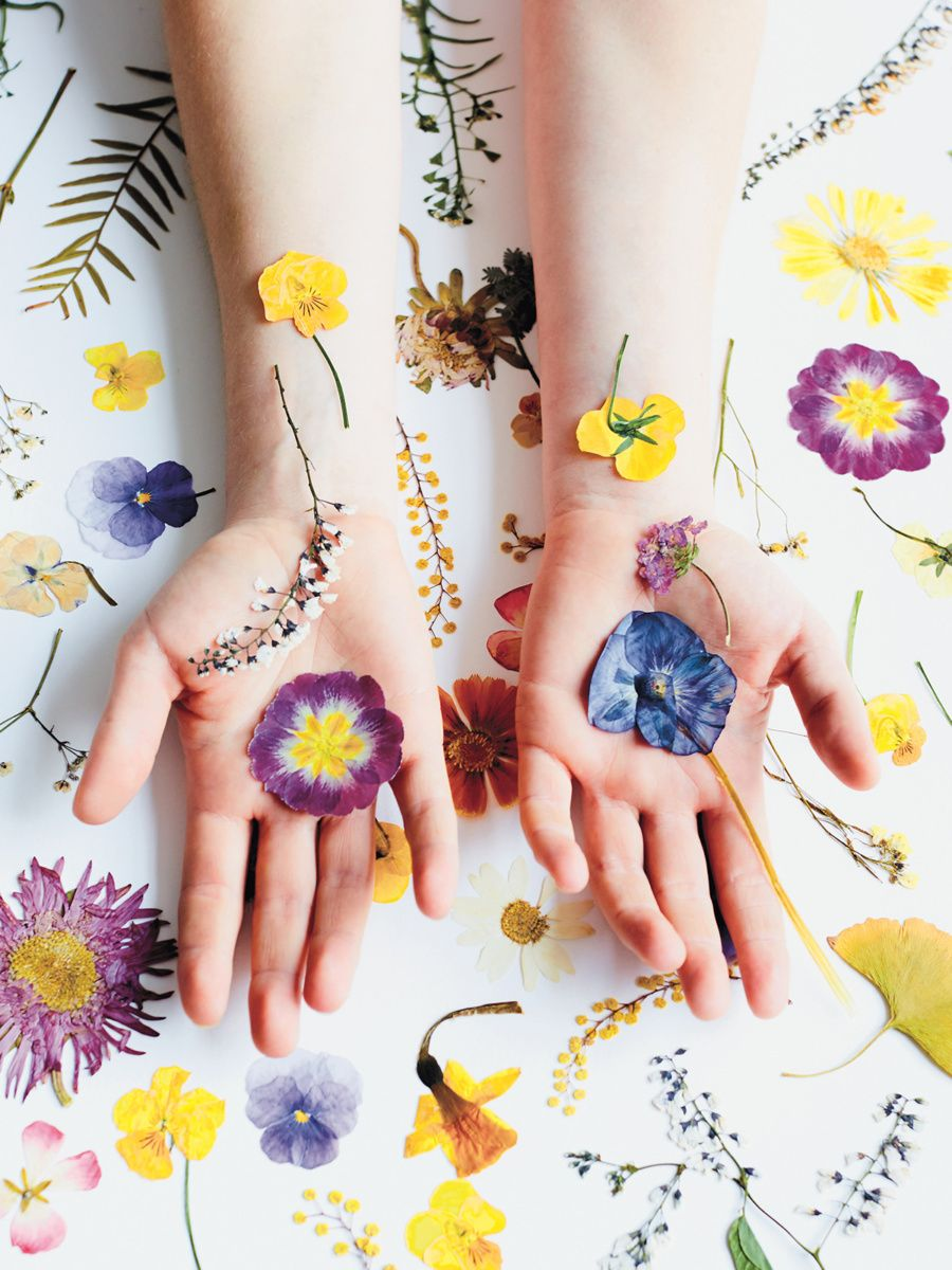Sunshine Spaces By Beci Orpin Pressed Flowers Photoshoot