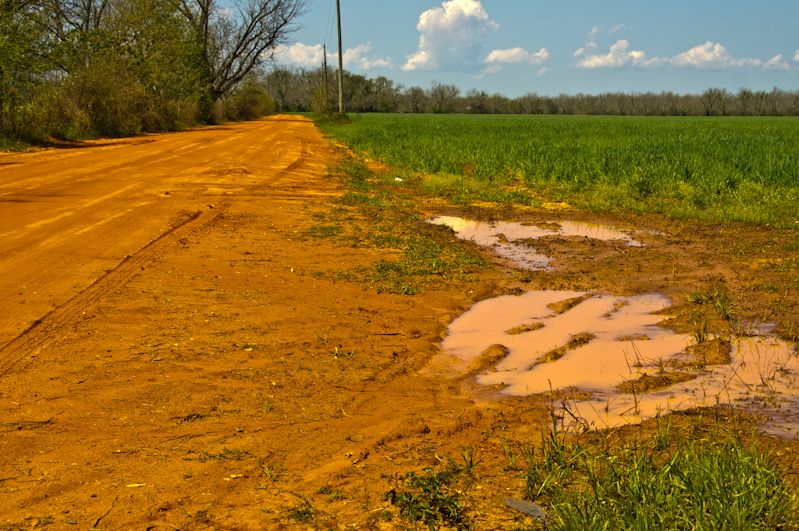 South Alabama Red Dirt Road I M Not From Alabama But I Am