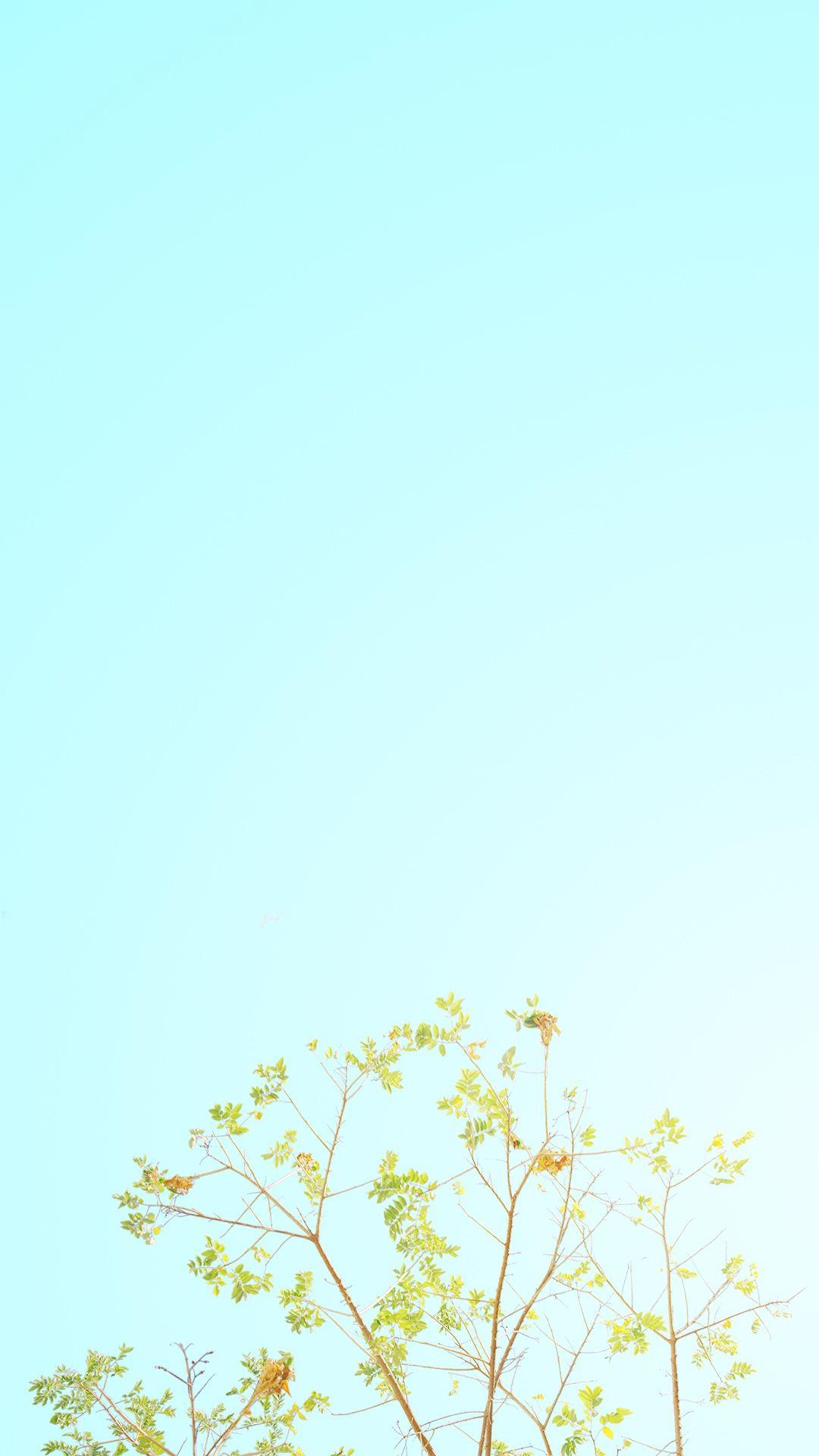 Aesthetic Pastel Minimalist Wallpaper Phone Best Event in The World