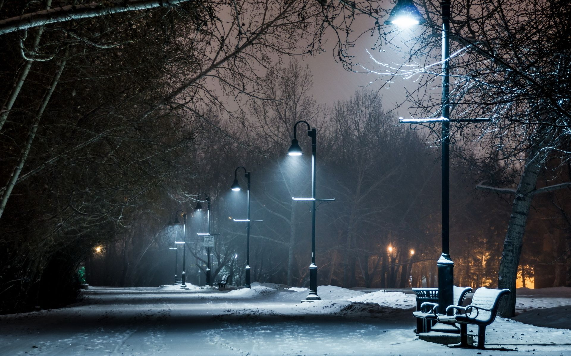 path, bench, beauty, colors | Park winter snow bench lights lamp ... for Lamp Post At Night Snow  59nar