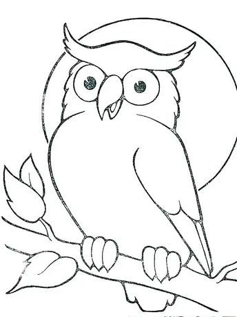 680 Gambar Sketsa Kolase Burung Hantu Gratis Terbaik Burung Hantu Sketsa Burung