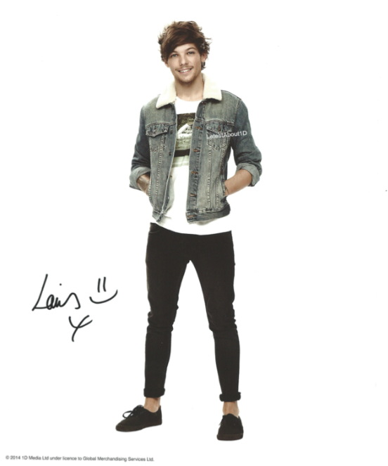 Harry Styles Transparent Tumblr Louis Tomlinson Png 2017 Transparent Png 1280x1663 Free Download On Nicepng Louis Tomlinson Harry Styles Style