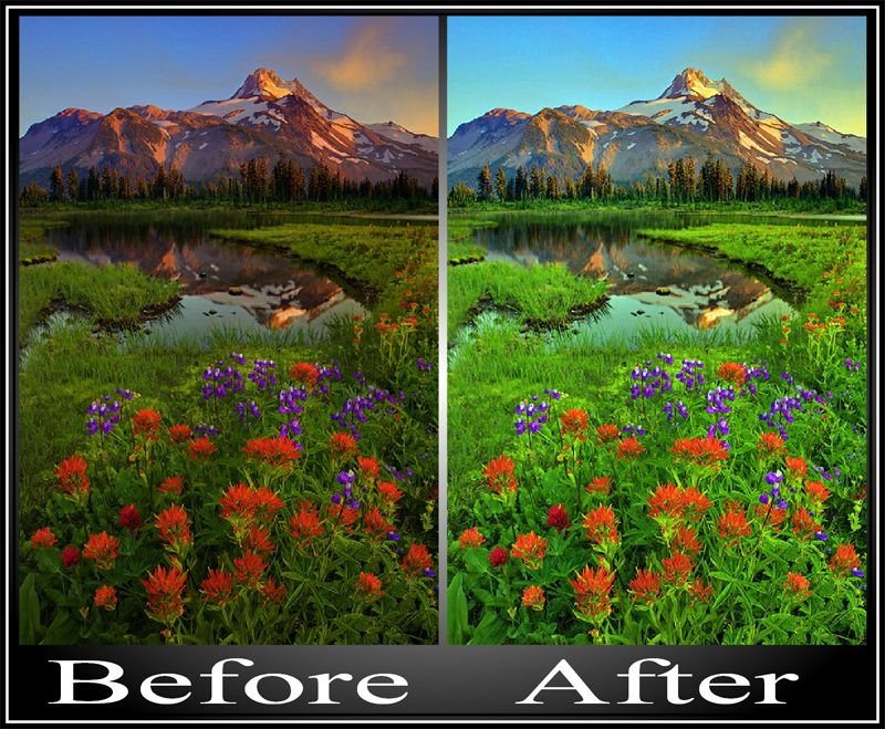 Photo fixing and special effects - Lupine and Indian Paintbrush in the Rocky Mountains