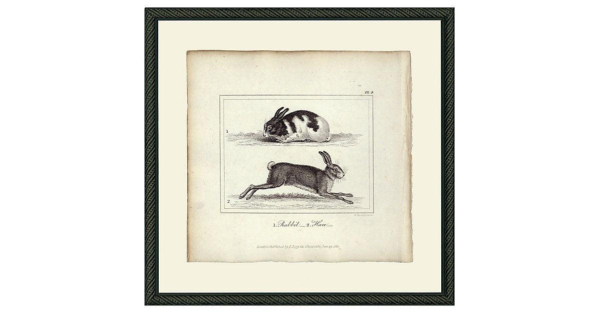 This print is a fine archival reproduction of an original 18th-century image. The print is set in a handsome wood frame with a black finish.