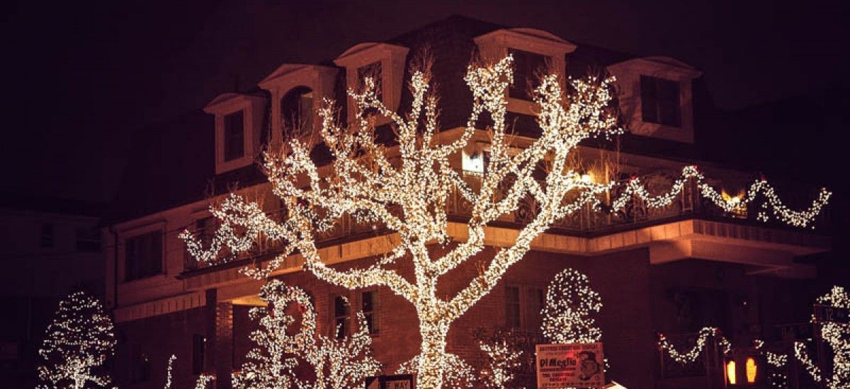 New York City The Christmas Lights in Dyker Heights