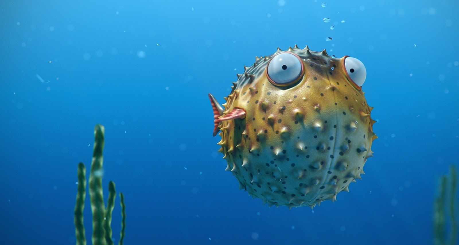 9 Pufferfish Hd Wallpapers Backgrounds Wallpaper Abyss Wallpaper Animals Fish Pet