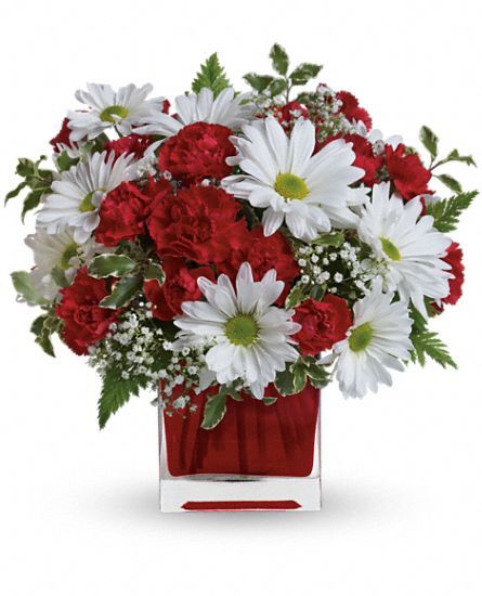 Red and white delight by teleflora flowers valentines day flowers red and white delight by teleflora flowers mightylinksfo Choice Image