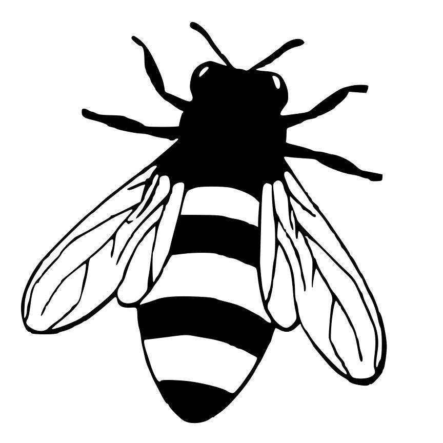 Honey Bee Die Cut Decal Car Window Wall Bumper Phone Laptop