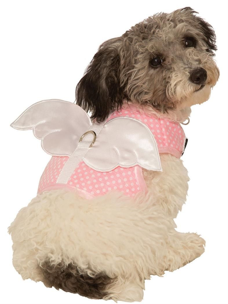 Fairy Angel Harness Pet Costume Pet Costumes Pet Halloween Costumes