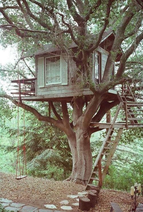 Tree house vintage style!
