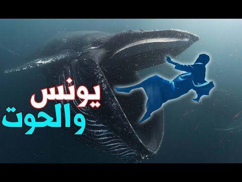 كيف عاش سيدنا يونس في بطن الحوت وما سر الصوت الغريب الذي سمعه وماذا وجد بعد خروجه Youtube Movie Posters Poster Movies