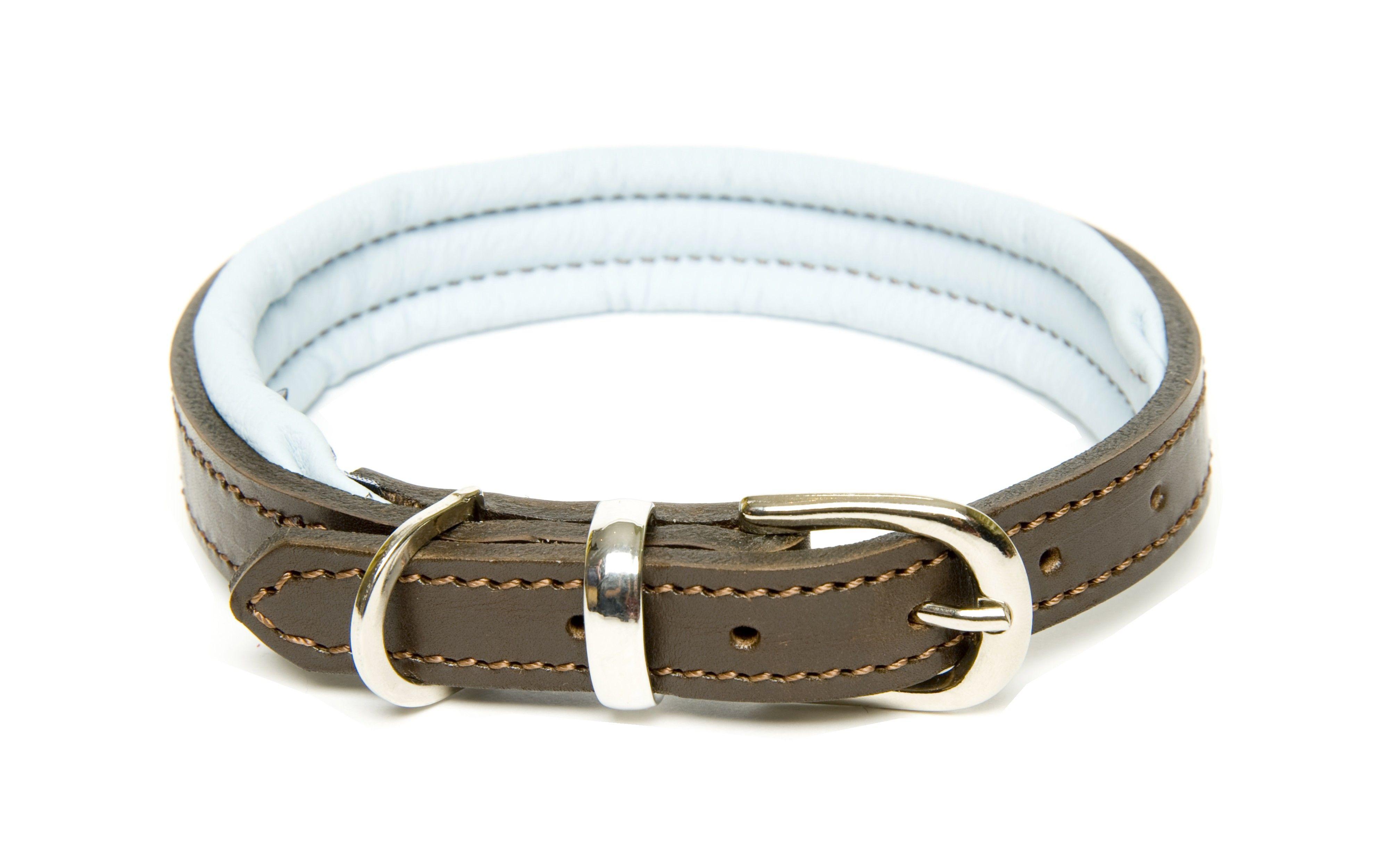 D&H Colours Leather Collar Leather collar, Leather dog