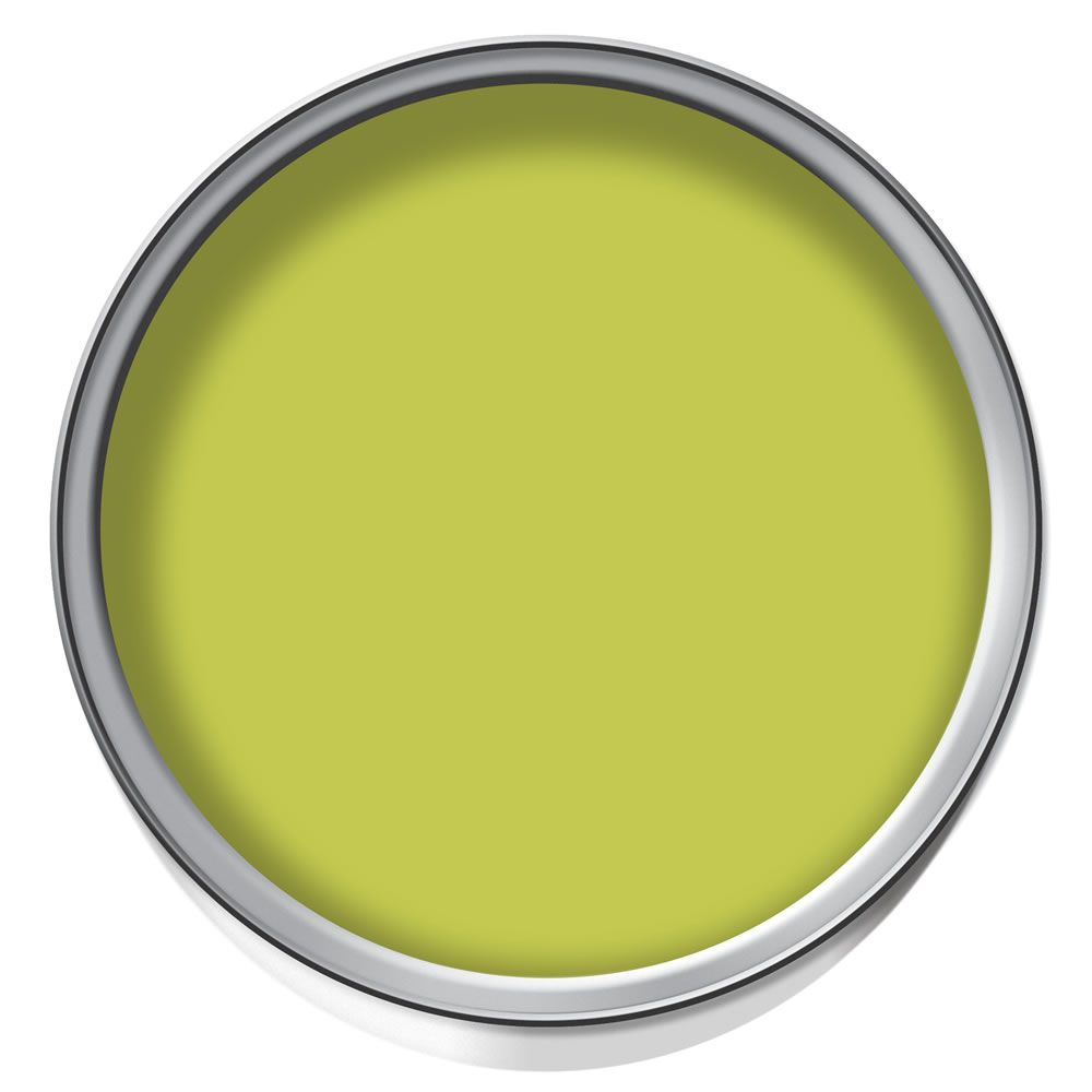 Dulux Feature Wall Matt Emulsion Paint Luscious Lime. It would be ...