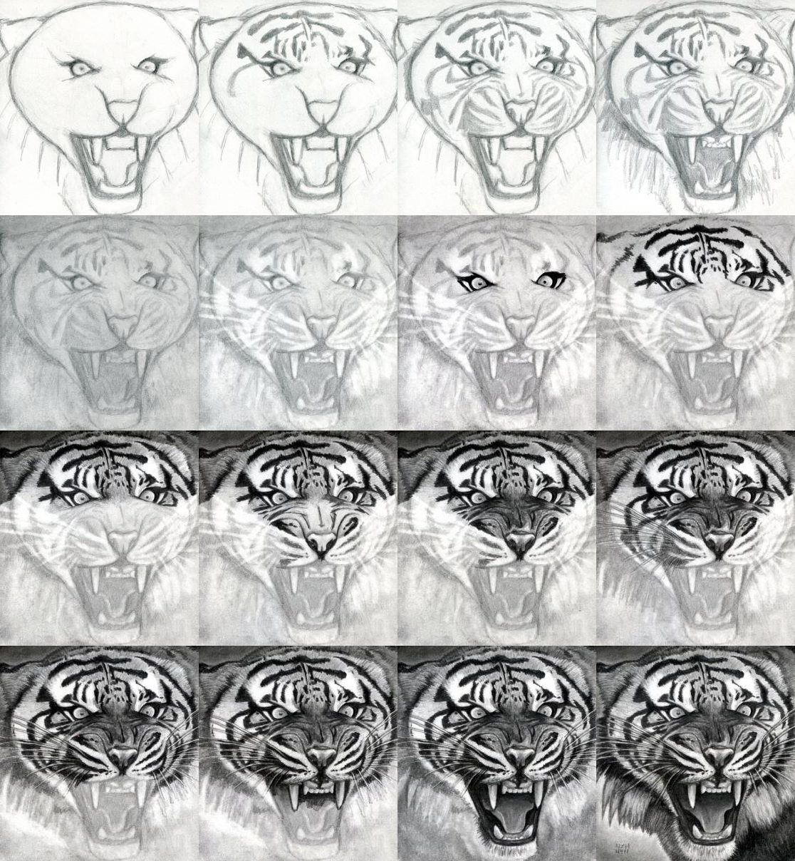 How to draw a realistic tiger honestly i could only do the first row without it looking like a total mess