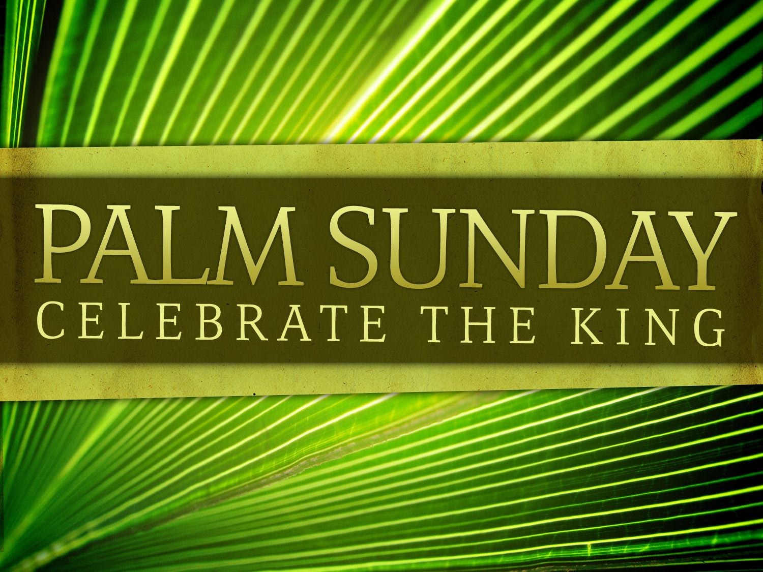 Image result for message about attending palm sunday service