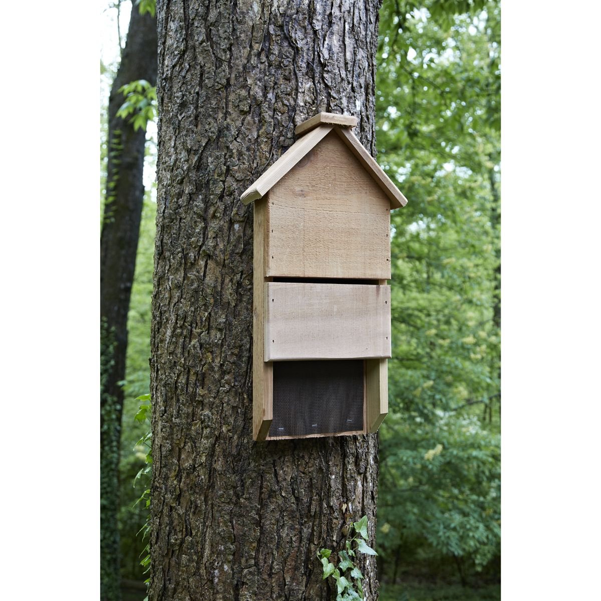 Bat house bat house bat houses bird house