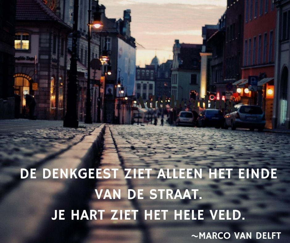 De denkgeest ziet alleen het einde van de straat. Het hart ziet het hele veld. ~Marco van Delft