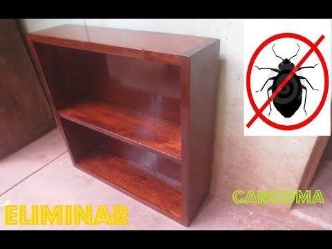 Como Eliminar Carcoma Insectos De Madera Para Siempre Metodo Casero Luis Lovon Youtube Limpiar Madera Restauración De Madera Decoracion Troncos De Madera