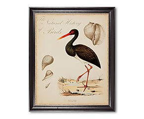 Gerahmter Digitaldruck Bird, 60 x 75 cm