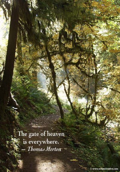 """The gate of heaven is everywhere.""  Thomas Merton"