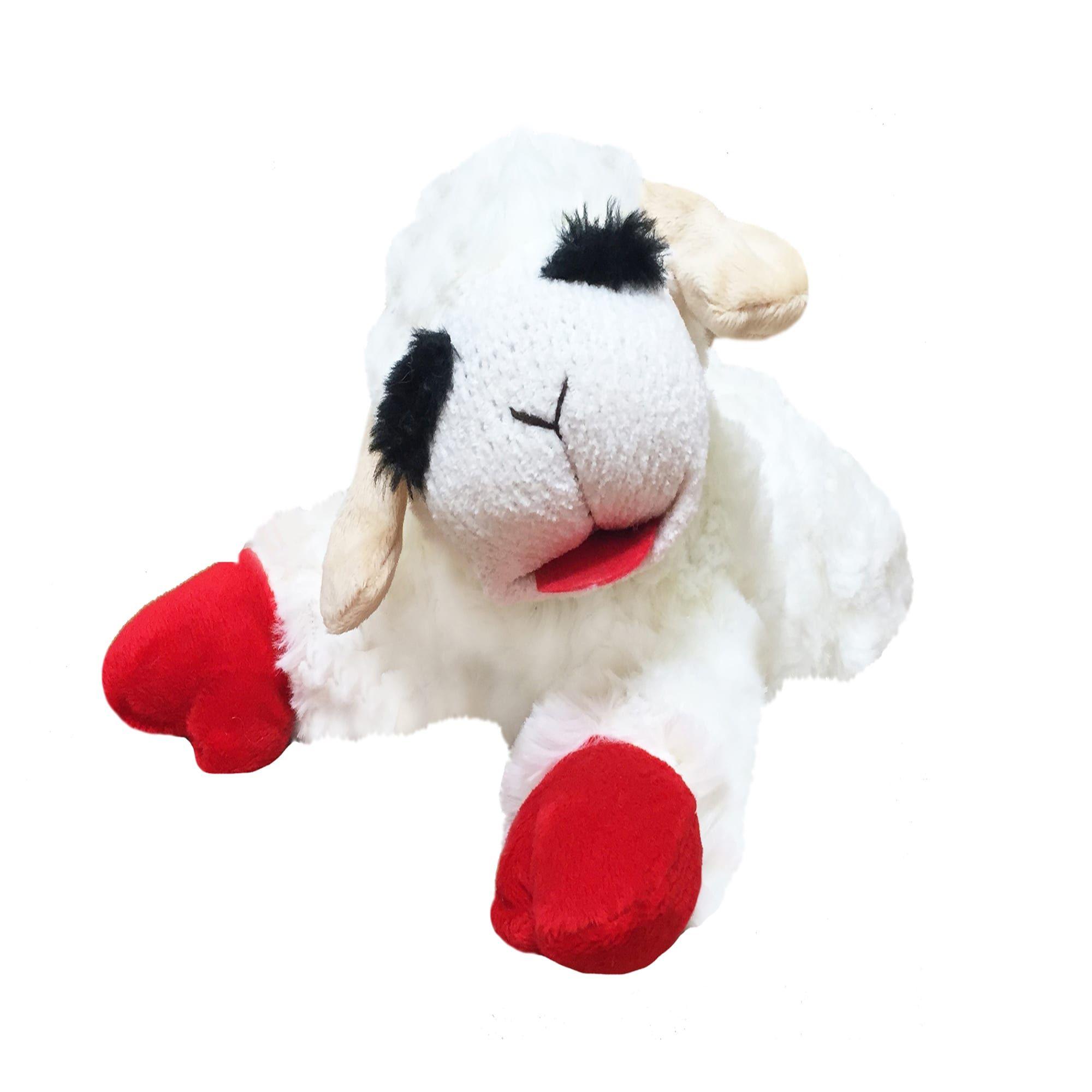 Multipet Lamb Chop Dog Toy Medium White In 2020 Small Dog Toys