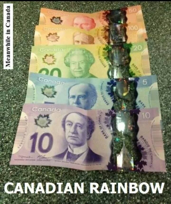 I Wish American Money Was As Cool Canadian