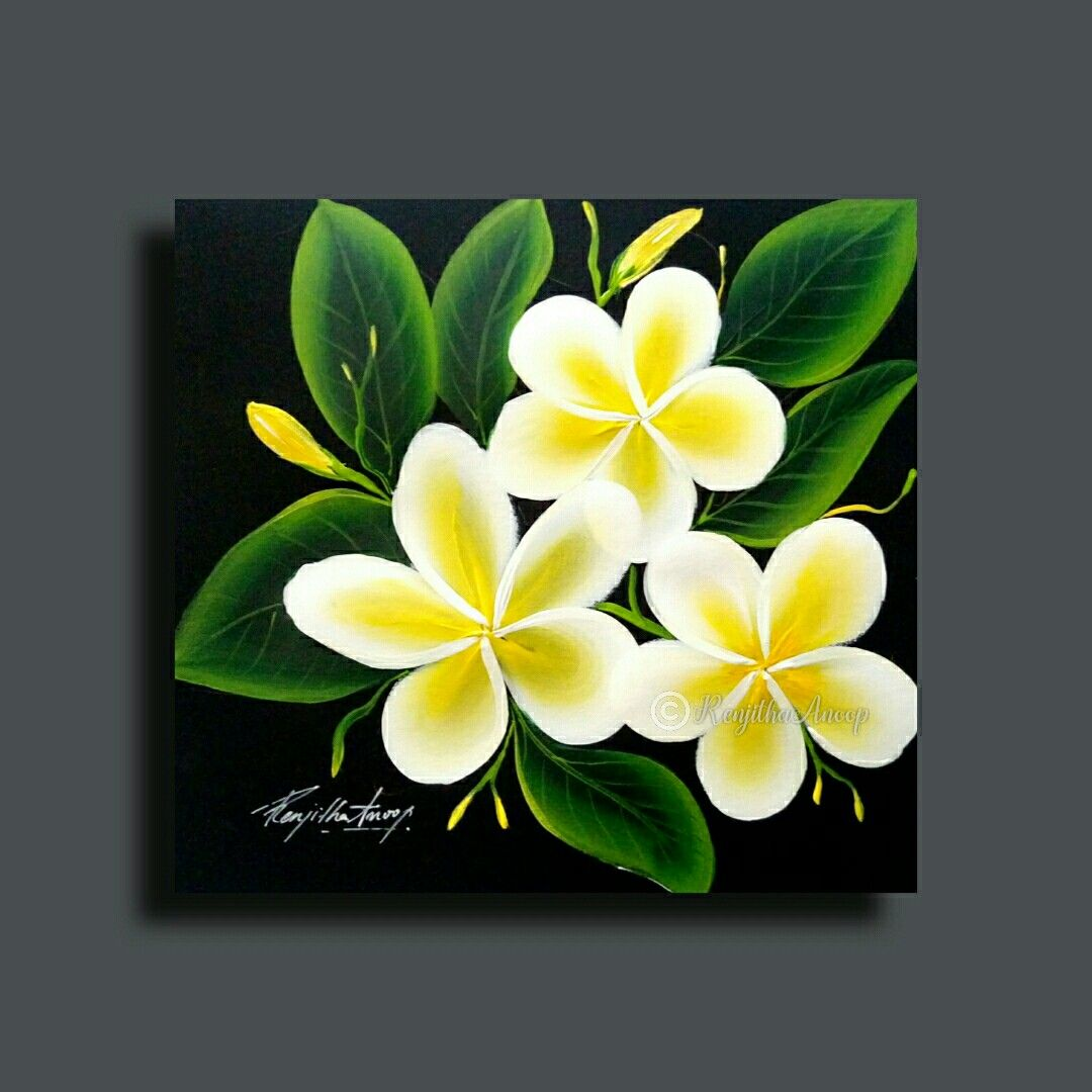 How To Paint Plumeria Check The Video On My Youtube Flower Painting Canvas Acrylic Painting Canvas Acrylic Painting Flowers