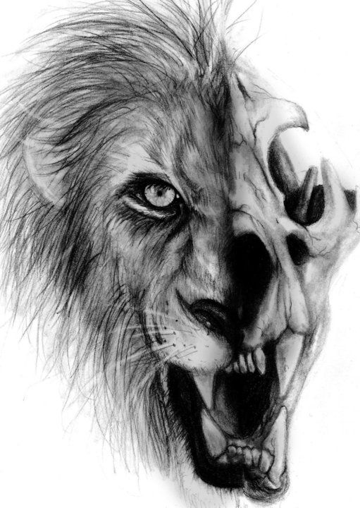 767e02f58c166 Half Lion by MindlessCreativity.deviantart.com on @deviantART | Ink ...