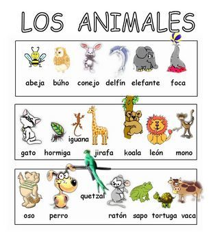 Los Animales Vocabulary Sounds Spanish Free Learning Spanish Elementary Spanish Spanish Animals