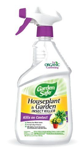 Garden Safe 10422X Houseplant and Garden Insect Killer, 24