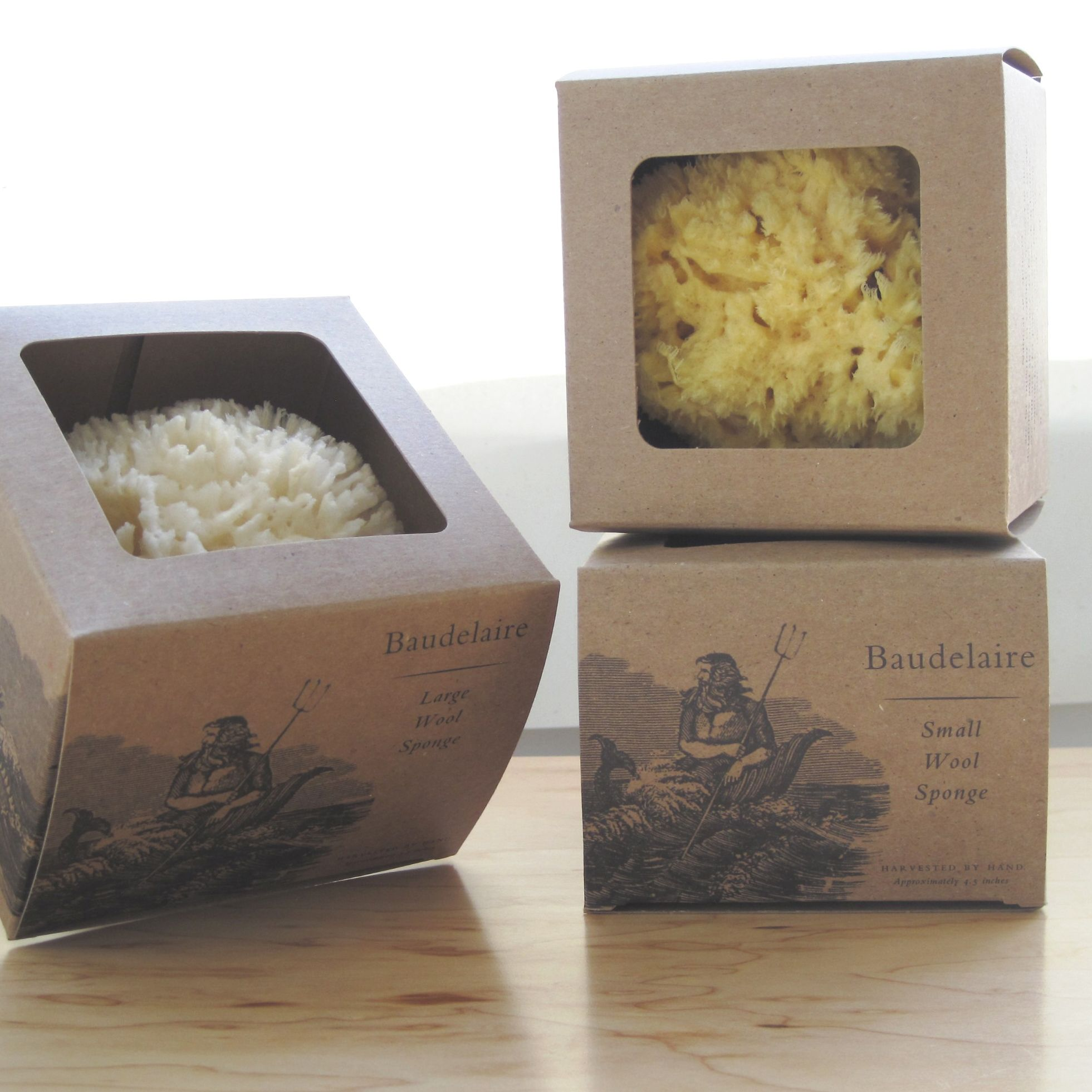 Natural Sea Sponges Bath And Beauty Products Imported