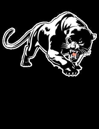 Black Panther Tatuagem De Pantera Preta Arte Em Vinil E