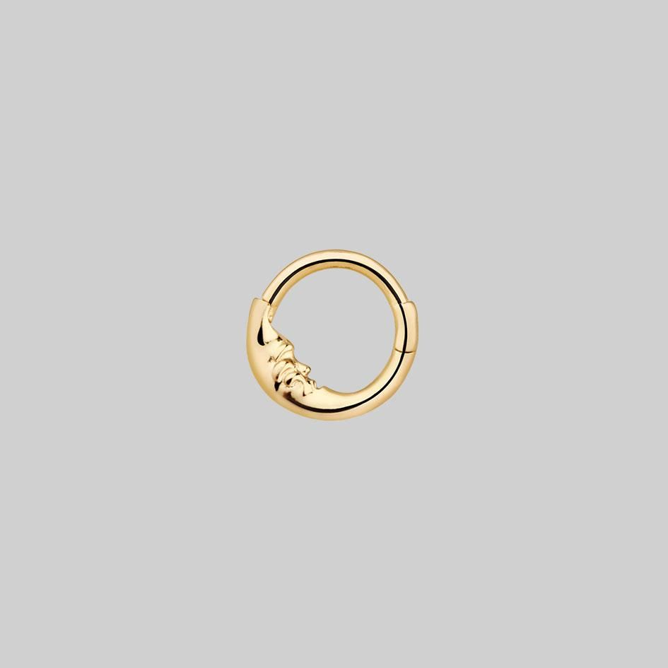 16G Antiqued Rose Gold PVD Graduated Band Hinge Ring  septum  daith  2 sizes 1.2mm
