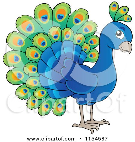 Cartoon of a Cute Peacock - Royalty Free Vector Clipart by ...