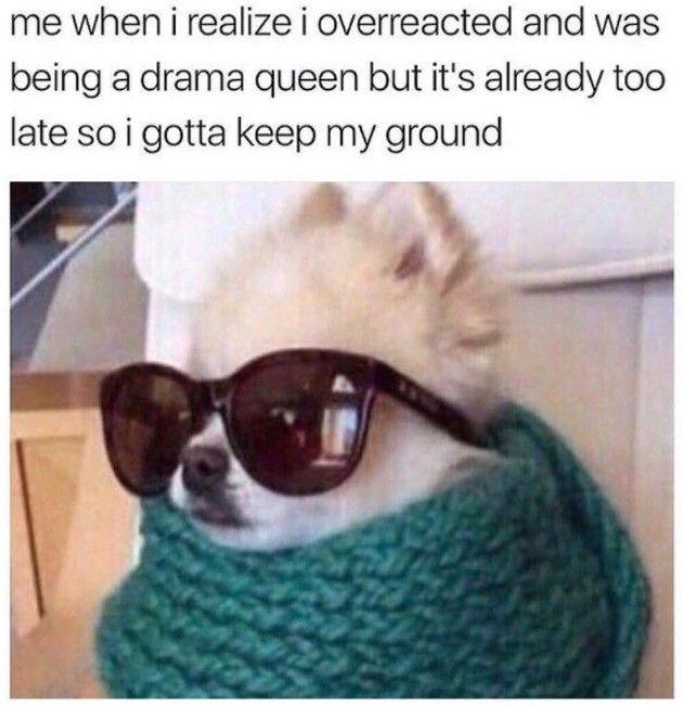 Doggo Memes Dank Doggo Memes Funny Doggo Memes Funny Dog Memes Stupid Funny Memes Funny Relatable Memes