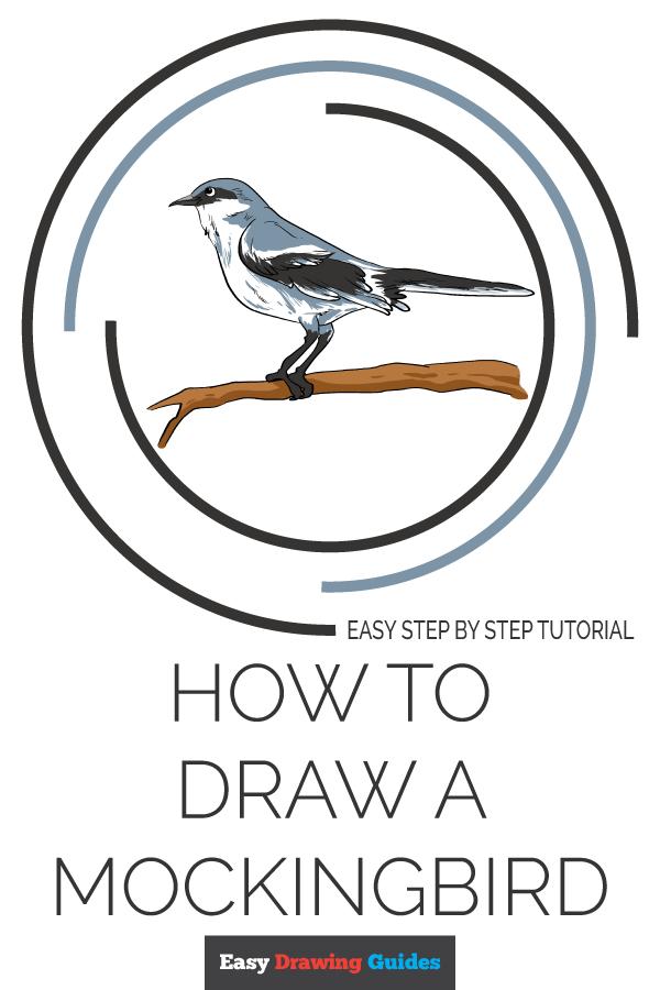How To Draw A Mockingbird Drawing Tutorial Easy Easy Drawings Drawing Tutorial
