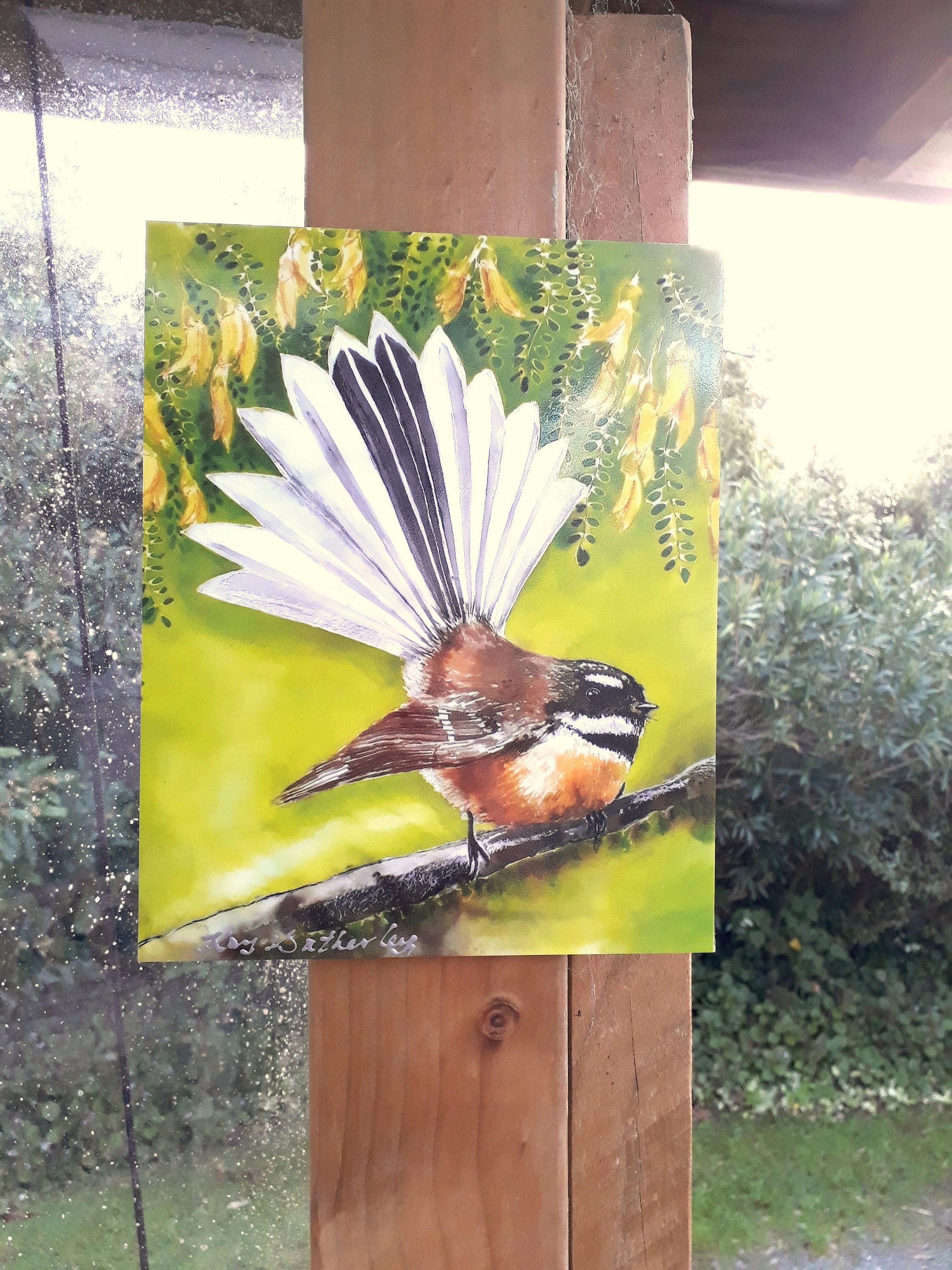 New Zealand FANTAIL BIRD, Outdoor Artwork, Outside art, Piwakawaka ...