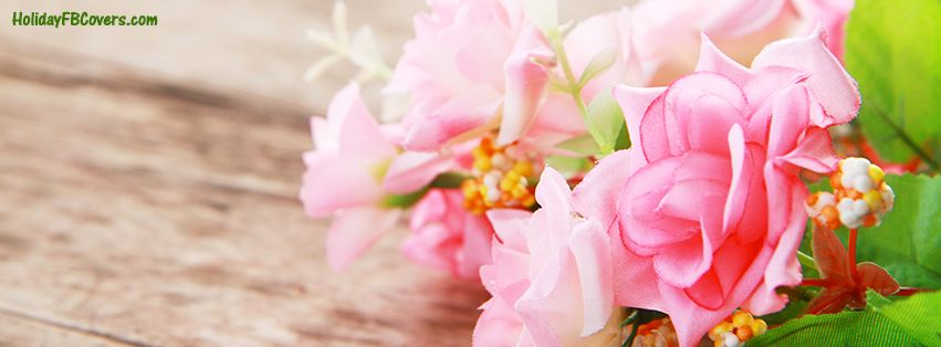 Spring Accommodation Facebook Covers: Fresh Pink Spring Flowers Facebook Cover HolidayFBCovers