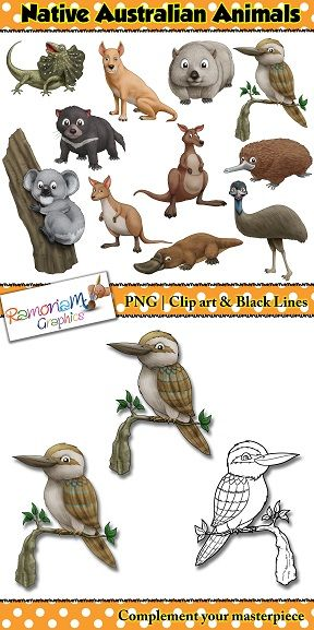 Australian Animals Clip Art Set Containing Realistic Illustrations Of Animals That Are Native To Animals Clip Art Australian Animals Australian Native Animals