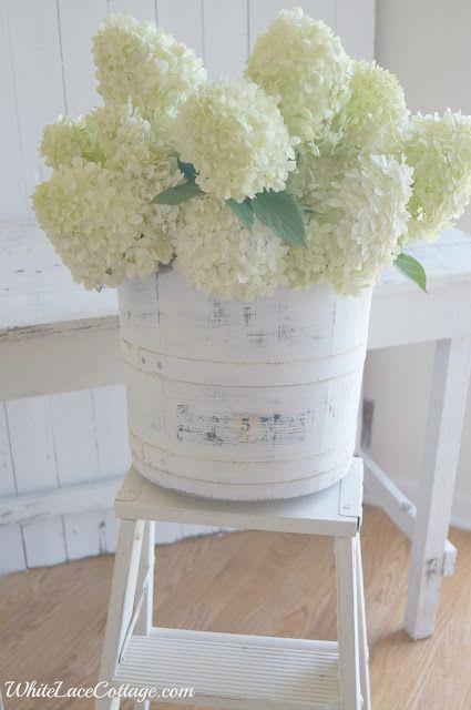 white on white floral