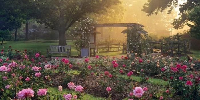 Whetstone Park Of Roses Columbus Park Ohio Travel Ohio Garden