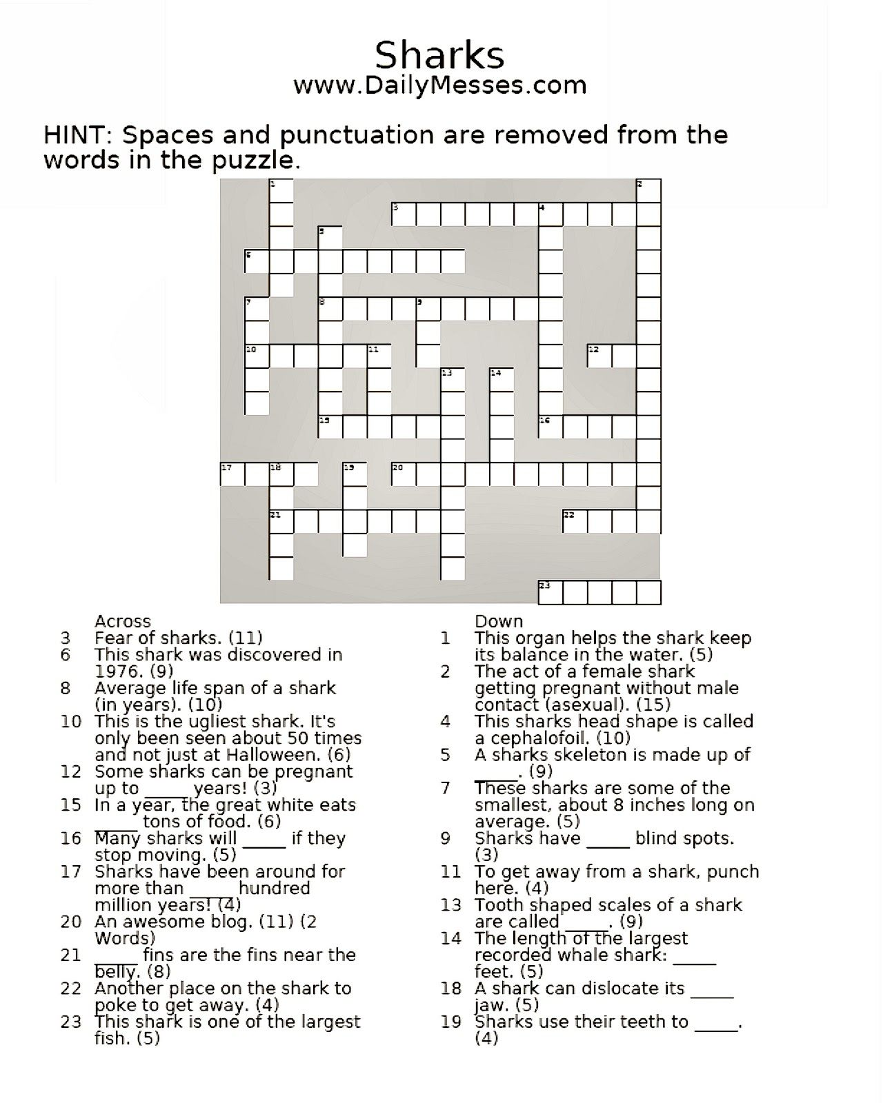 Shark Crossword Puzzle With Images